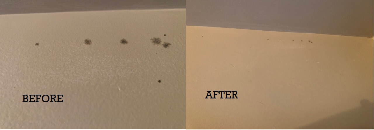 Before and After - one pass of SaniZap Black Mold
